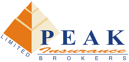 Peak Insurance Brokers Logo